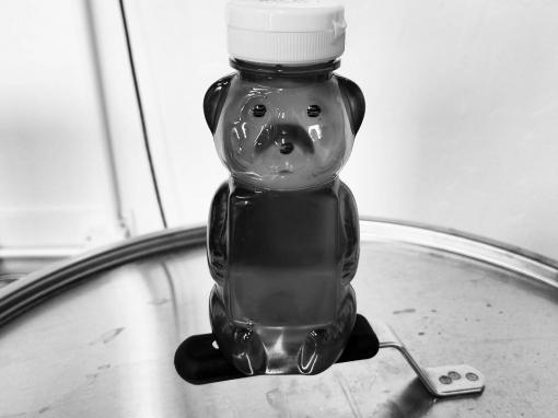 Something, something, something…. group of bears.