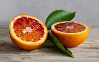 Bombastic Beer Release: Blood Orange Wit